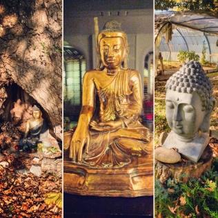 The many buddhas at Denchen Chöling