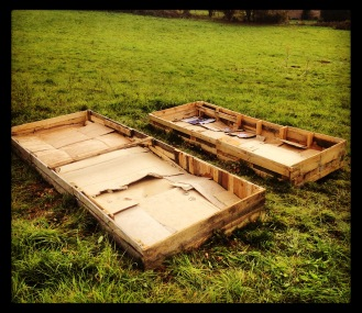 The raised beds all set up and ready for growing organic veggies.