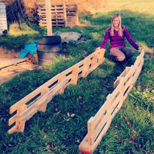 Time to create the raised beds out of recycled pallets