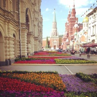 Flower gardens in Moscow