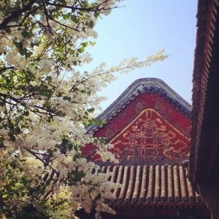 A stop in Beijing...