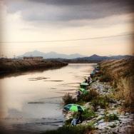 Fisherman in Naju
