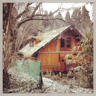 Family Hiyashi's gorgeous cedar-log cabin