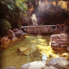 Private onsen....lush