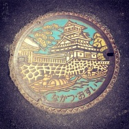 Another exquisite manhole cover