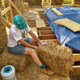 Halving the bales; necessary to allow us to create a running bond with the bales, in exactly the same way as brick work.