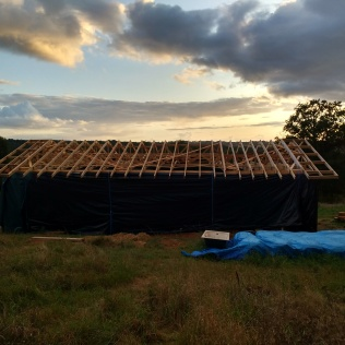 A completed roof structure complete with overhangs