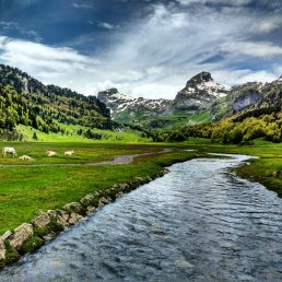 Idyllic meadows in the French Pyrenees